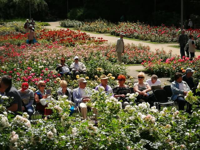 Różany Ogród Sztuki 2016